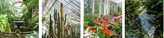 Four glasshouses