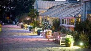 Terrace - Evening