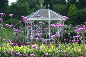 Main Lawn and Bandstand at Birmingham Botanical Gardens