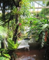 The glasshouses at Birmingham Botanical Gardens