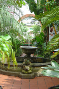 Fountain in the Subtropical House