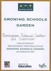 Growing Schools Garden Award