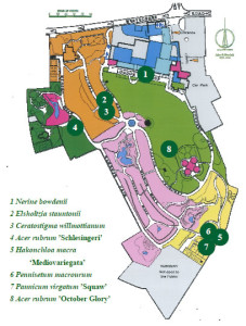 October Walk Map