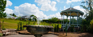 How to be Volunteer a Birmingham Botanical Gardens