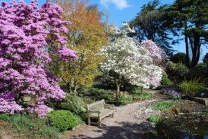 Gardeners Blog August