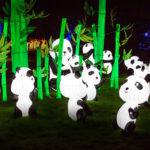 Magic Lantern Festival Birmingham 2016