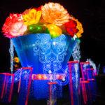 2016 Magic Lantern Festival