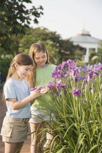 Plan a School visit to Birmingham Botanical Gardens