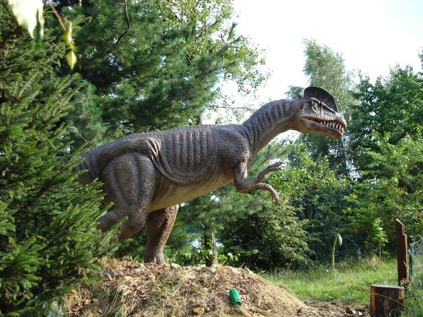 Jurassic Kingdom Dinosaurs at Birmingham Botanical Gardens