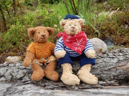 Teddy Bears Picnic - Birmingham Botanical Gardens
