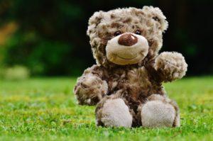 Teddy Bears Picnic at Birmingham Botanical Gardens