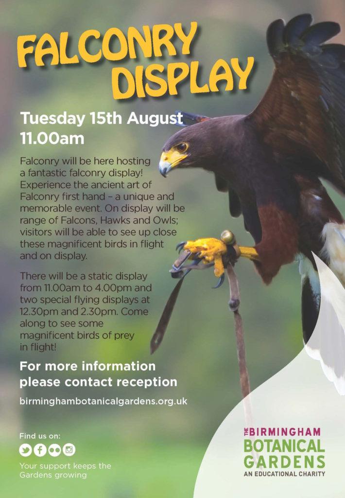 Falcon Display at Birmingham Botanical Gardens