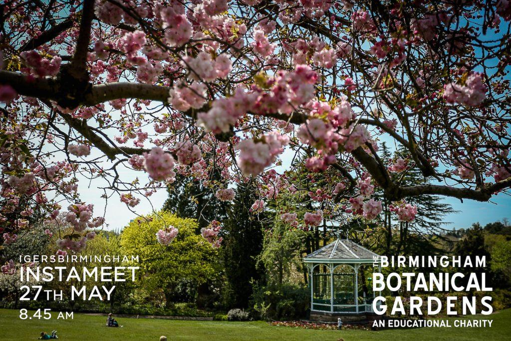 instameet at Birmingham Botanical Gardens