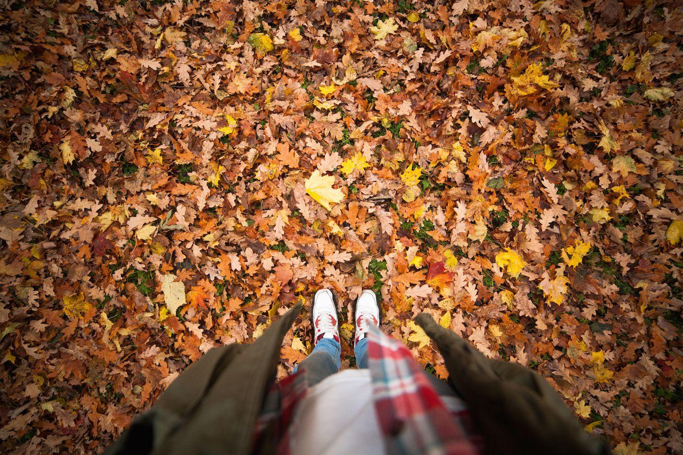 October Half Term Fun 29th October - 2nd November